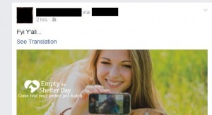 Facebook automatic translation